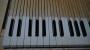 55-klavier-toetsbeleg-ossenbeen-en-ebbenhout